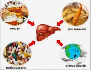 hình ảnh minh học - rối loạn chức năng gan